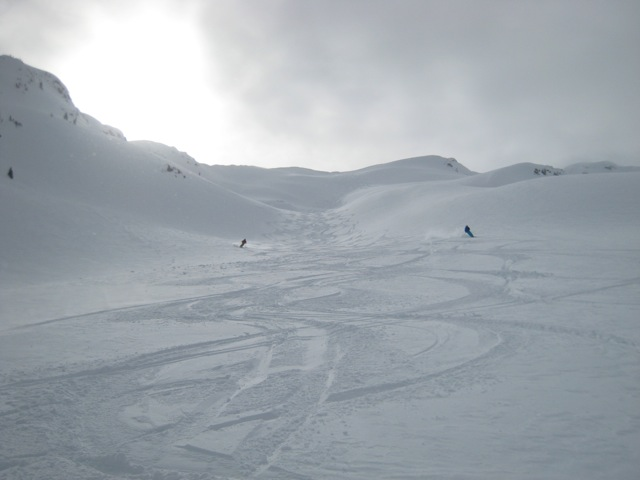 Afternoon tracks, CMH Monashees